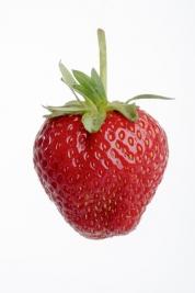 truskawka;-owoc