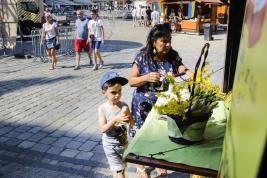 Chlopiec-z-lodem-na-wroclawskim-rynku