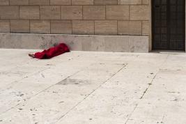 koc;-czerwony;-bezdomny;-kosciol;-Rzym;-bazylika