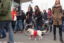 manifestacja;-pies;-Warszaw;-manifestanci